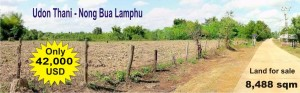 Land for sale nong buah lamphu with chanott