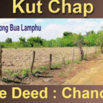 Udon Thani - Kut-Chap-cheap-Land-for-sale-5-Rai-cheap-770x386