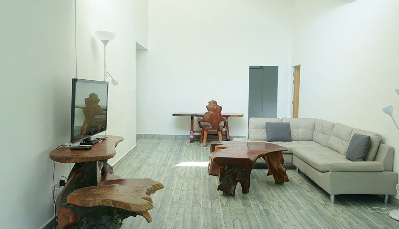 the_living-room_towards_the_bedrooms_1
