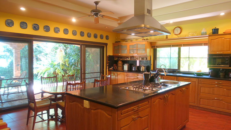 Just_part_of_this_impressive_kitchen